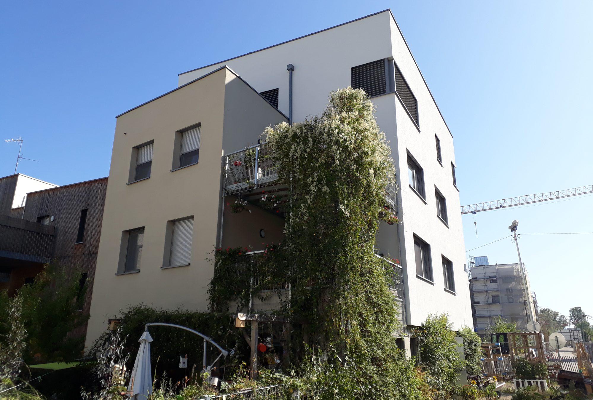Quatr'o Danube - habitat participatif à Strasbourg