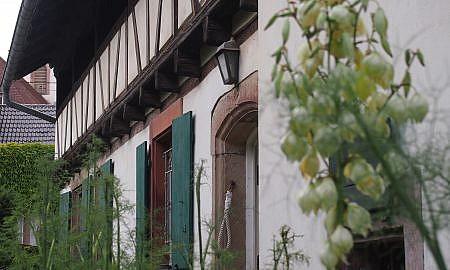 Blaesheim, bien remarquable et champ des possibles à la vente - annonce d'habitat participatif à Strasbourg