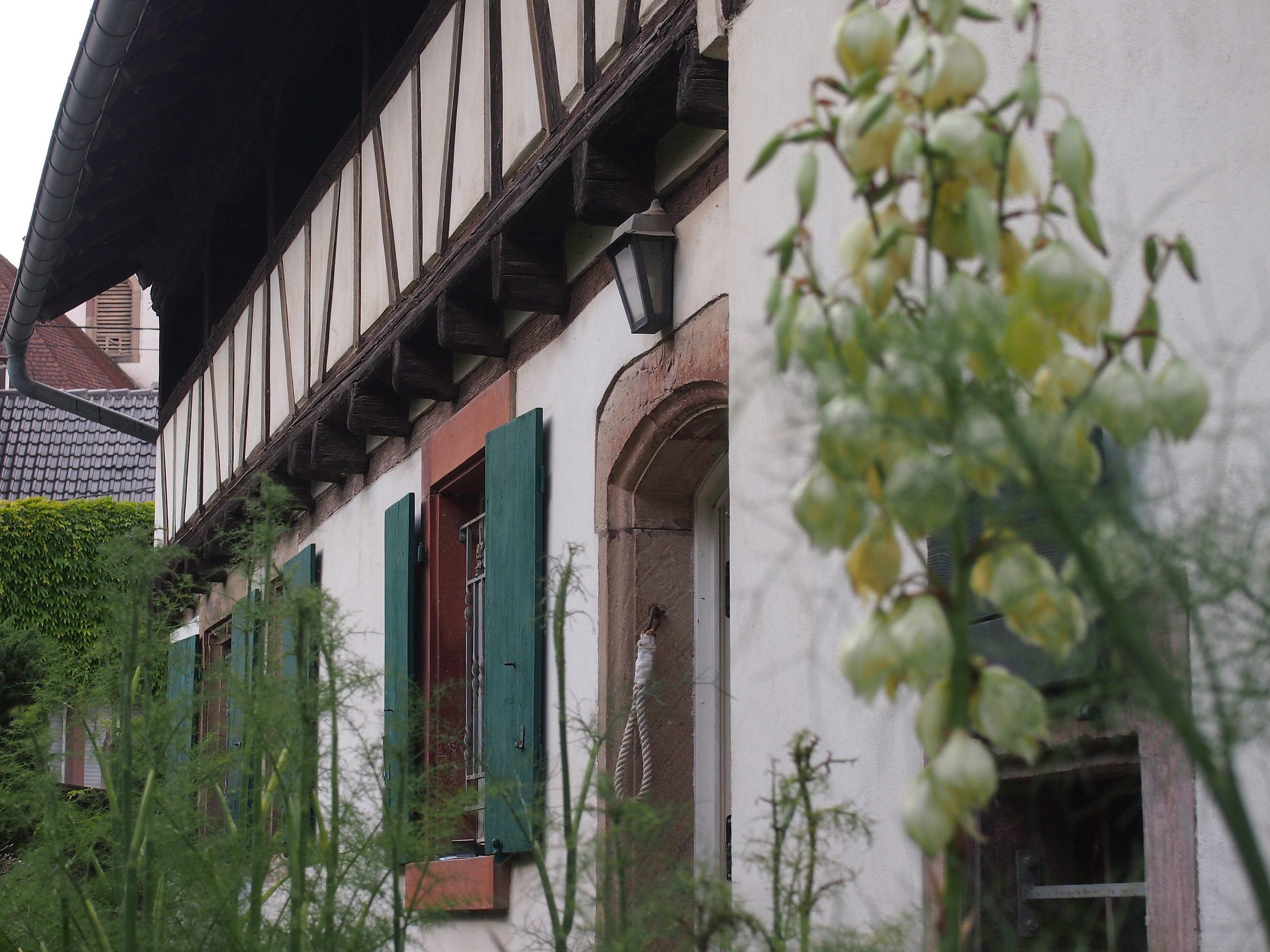 Blaesheim, bien remarquable et champ des possibles à la vente